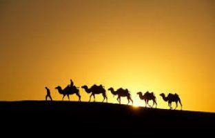 Samakah Haji dan Ziarah? (2)