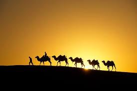 Apakah Sama Haji dan Ziarah?