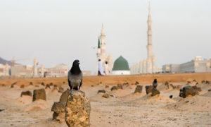 Siapakah yang Membunuh Al-Husain Cucu Nabi saw?