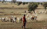 Selama Ghaibah Kubra Bagaimana Imam Mahdi Afs Mencukupi Kebutuhan Hidup